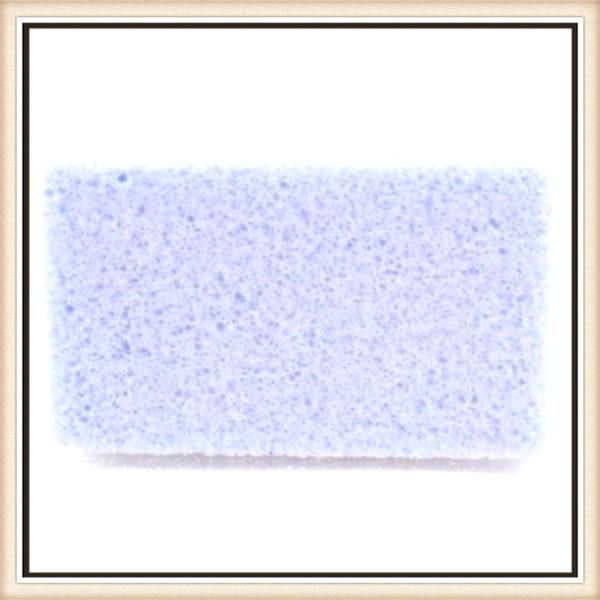 foot pumice stone (18)